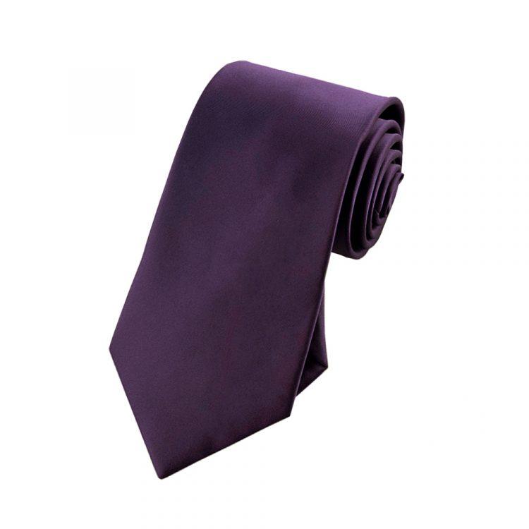 Boys Grape Eggplant Purple Tie