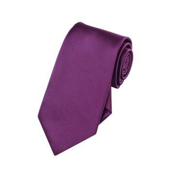 Boys Plum Grape Purple Tie