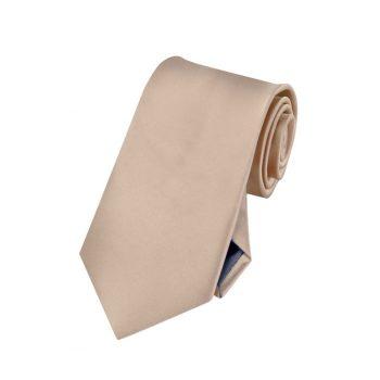 Boy's Beige Tan Plain Tie