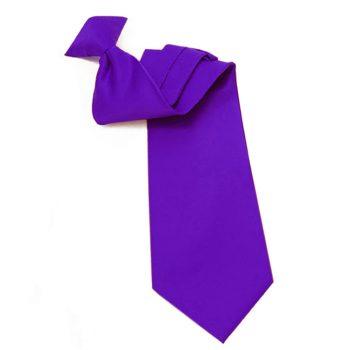 Mens Cadbury Purple Amethyst Clip On Tie