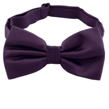 Grape Eggplant Bow Tie