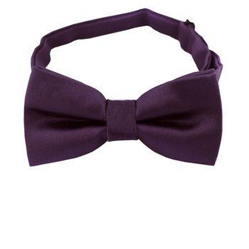 Boys Grape Eggplant Bow Tie